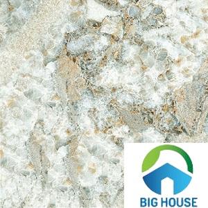 gạch giả đá hoa cương 60x60 6